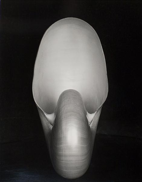 nautilus_1927.jpg